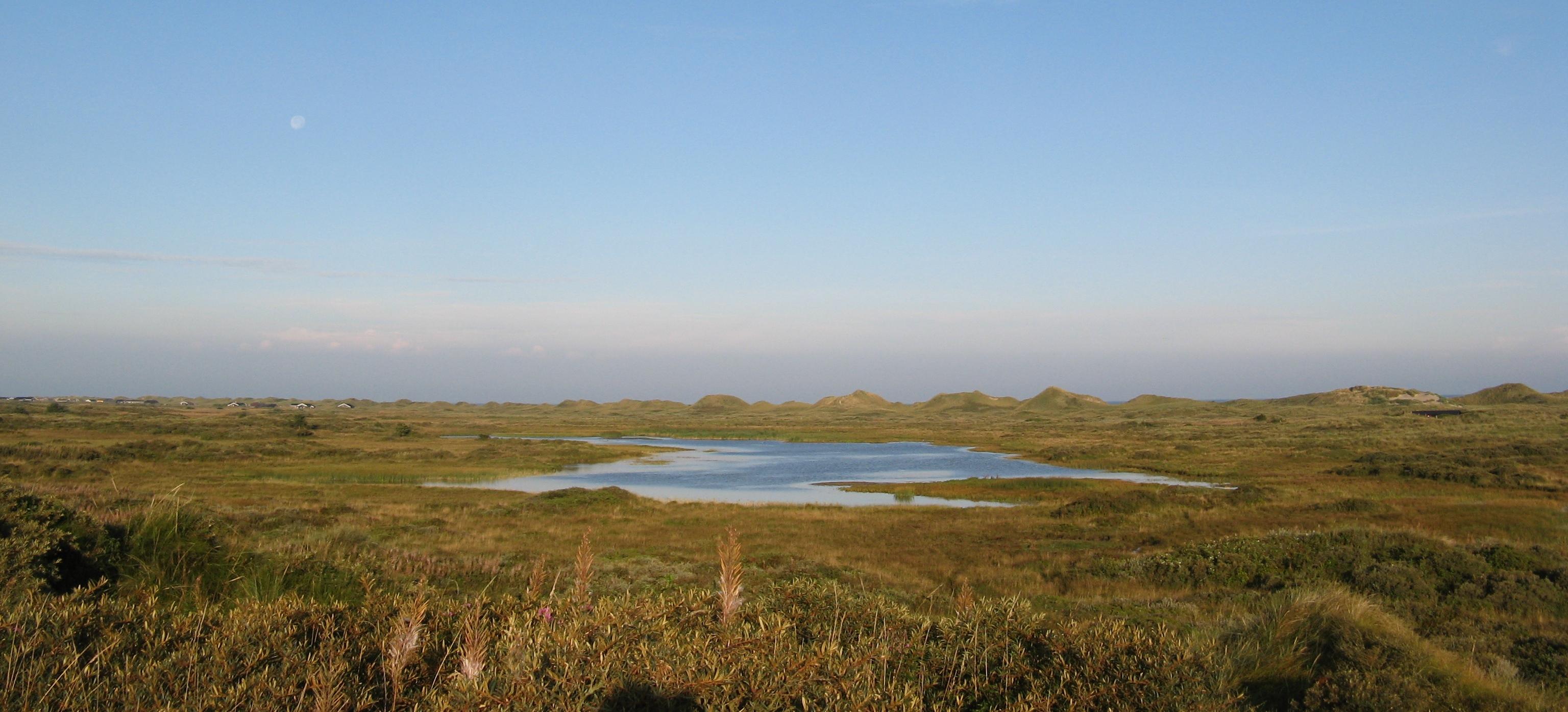 Vandplasken landskab