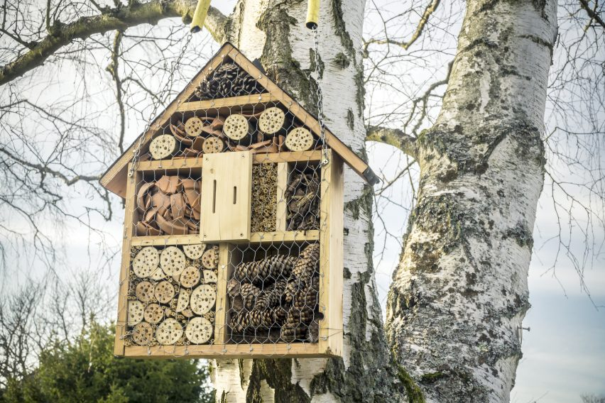 Insekt hotel i haven med beskyttelse for insekterne